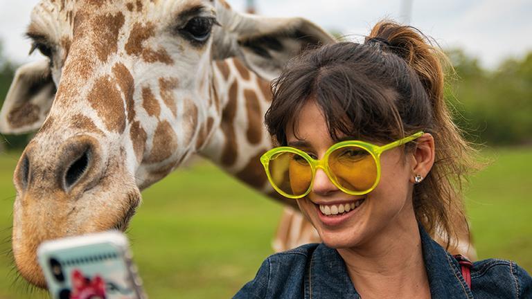 paula-fernandes-tira-selfie-com-girafa